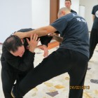 applicazione taiji tang lang 9