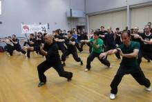 tang lang kung fu 8
